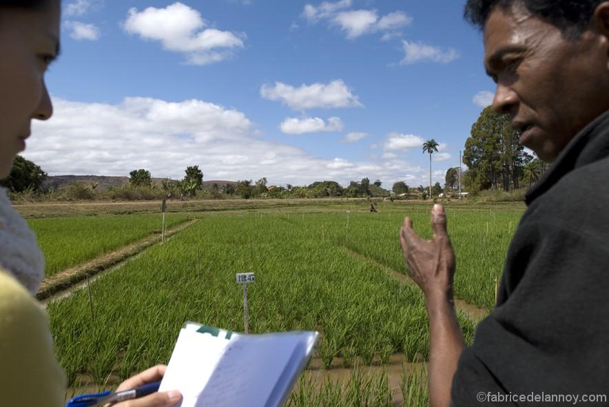 Un reportage pour l'ONG JICA réalisé dans la région de l'Alaotra à Ambatondrazaka